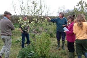 Ourganics ~ an inspirational permaculture project